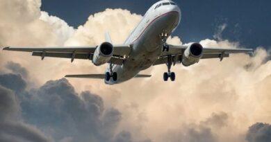 covid-19:-india-suspends-international-flights-till-may-31