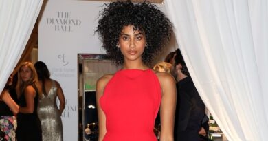 model-imaan-hammam-shows-solidarity-with-india-amid-covid-19-spike